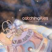 Catching Flies - Let Your Hair Down  artwork