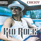 Kid Rock - Picture (feat. Sheryl Crow)  artwork
