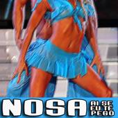 [Download] Nosa (Ai Se Eu Te Pego) MP3