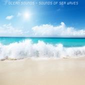 [Download] Ocean Waves - Calm Sounds of the Ocean MP3