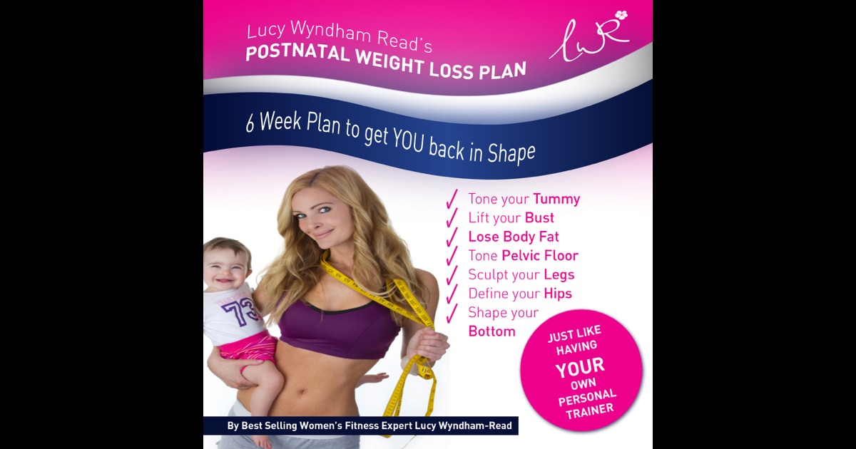 The LWR Postnatal Weight Loss Plan by Lucy Wyndham-Read on ...