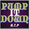 PUMP IT DOWN [Feat.mcKY] / N.T.P