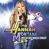 Hannah Montana - Best of Both Worlds Concert