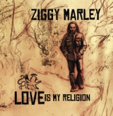 Beach In Hawaii - Ziggy Marley Cover Art