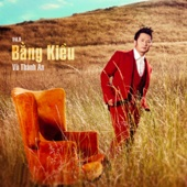 Tinh Khuc Vu Thanh Anh (Vol.9) - Bang Kieu