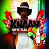 Wavin' Flag (Coca-Cola Celebration Mix) - Single, K'naan