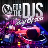For the DJs 2012 - Various Artists
