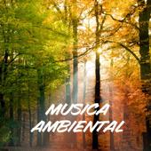 Musica Ambiental - Hilo Musical Con Sonidos de la Naturaleza, Musica Relajante para Clases de Yoga y Reiki, Meditación