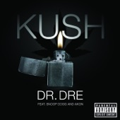 Kush (feat. Snoop Dogg & Akon) - Single