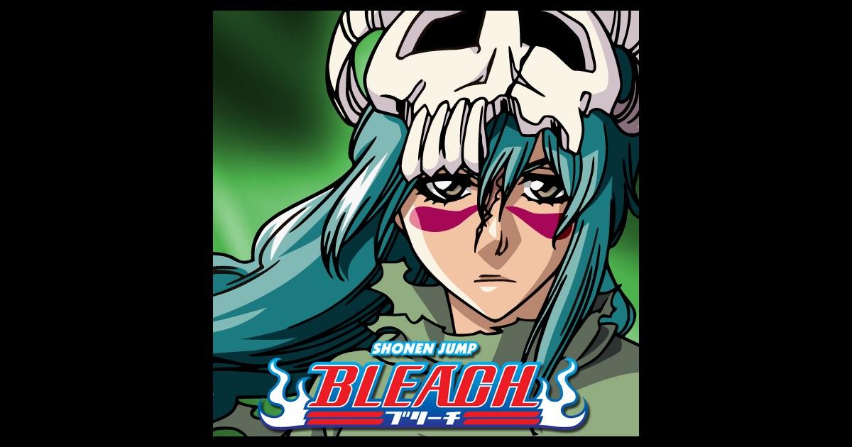 Bleach season 4 ending song list : Video de one piece pirate
