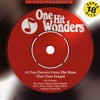 One Hit Wonders - 18 Pop Classics from the Stars That Time Forgot (Rerecorded Version)