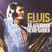 An Afternoon In the Garden (Live) cover art