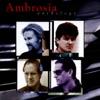 Imagem em Miniatura do Álbum: Anthology