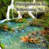 [Download] Regenwald in Brasilien MP3