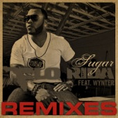 Sugar Remixes (feat. Wynter)