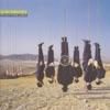 Imagem em Miniatura do Álbum: Try Anything Once