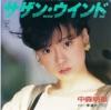 サザン・ウインド(オリジナル・シングル・ジャケット)
