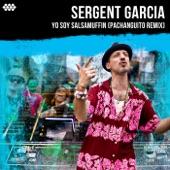 Yo Soy Salsamuffin (Pachanguito Remix) - Single