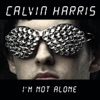 I'm Not Alone (Tiesto Remix) - Single, Calvin Harris