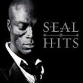 Seal: Hits (Deluxe Version)