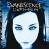 Evanescence - Bring Me To Life Grafik