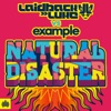 Natural Disaster (Remixes) [Deluxe Version], Laidback Luke & Example