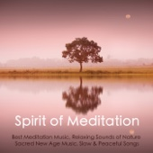Spirit of Meditation - Best Meditation Music, Relaxing Sounds of Nature, Sacred New Age Music, Slow & Peaceful Songs - Meditation Music Guru