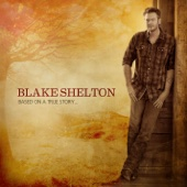 Blake Shelton - Based On a True Story... (Deluxe Version)  artwork