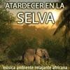 Atardecer en la Selva - Música Ambiente Relajante Africana, DJ Donovan
