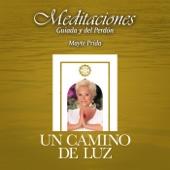 Meditaciones Guiada Y Del Perdon