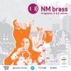 NM Brass 2013 - 2 divisjon