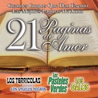 21 Paginas de Amor - Various Artists