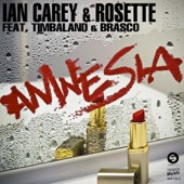 Amnesia (Remixes) [feat. Timbaland & Brasco] - EP