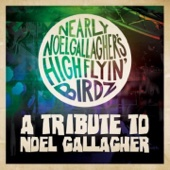 Nearly Noel Gallagher's Highflyin Birdz - Stop Crying Your Heart Out  artwork