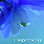Entspannung - Entspannungsmusik und Naturgeräusche, New Age Flöte und Klaviermusik für Entspannung