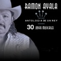 Ramón Ayala Baraja de oro