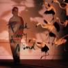 Imagem em Miniatura do Álbum: Back of My Mind