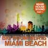 Big Room Beats in Miami Beach (Miami House Sound, Pt. 1) — SL Curtiz & Domovnik