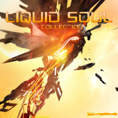 Liquid Soul - Collection