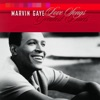 Marvin Gaye: Love Songs - Greatest Duets, Marvin Gaye