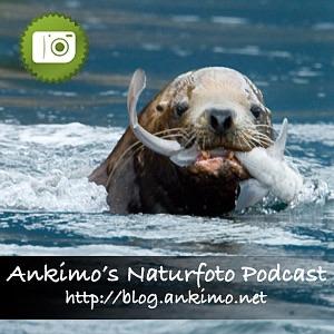 Ankimo's Naturfotografie Blog