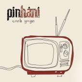 Pinhani - Gönül Dağı (Live) artwork