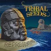 Representing - Tribal Seeds