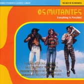 Everything Is Possible! The Best of Os Mutantes - Os Mutantes