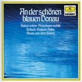[Downloaden] An der schönen blauen Donau, Op. 314 MP3