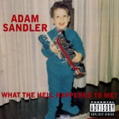 Cover to Adam Sandler's What the Hell Happened to Me?