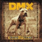 X Gon' Give It to Ya (Bonus Track)