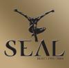 Seal - Kiss from a Rose kunstwerk