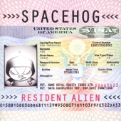 In the Meantime - Spacehog