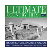 Ultimate Country Hits Vol.2